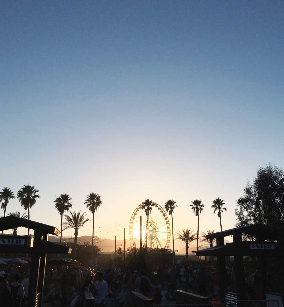 Coachella 2016 Sunset, Palm Trees